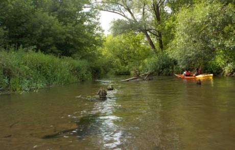 spływ rzeką Widawką