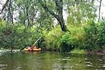 Rzeka Liswarta
